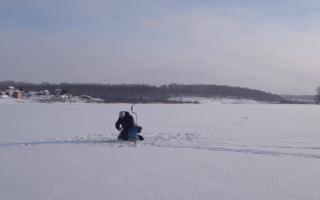 Крупный окунь зимой: где искать окуня зимой на озере и на реке
