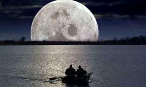 Лунный календарь рыбака: влияние луны на клев рыбы зимой